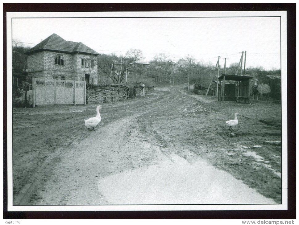 CPM Neuve Moldavie HOGINESTI Une Rue Du Village - Moldavie