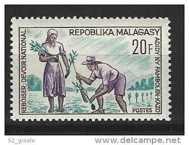 "Madagascar YT 419 "" Reboisement "" 1966 Neuf** - Madagascar (1960-...)"