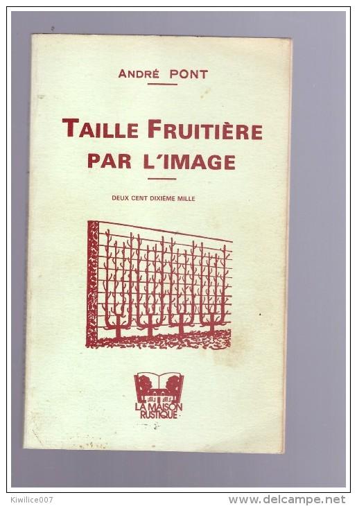 Taille Fruitiere  Par L Image   Andre Pont  Culture  Fruits  Cerisier Abricotier Pommier Noyer Prunier Figuier - Cultural