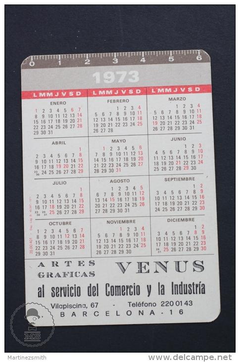 1973 Small/ Pocket Calendar - John Surtees Lola T70 - Tamaño Pequeño : 1971-80
