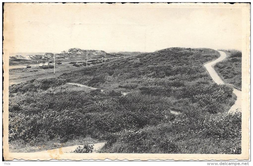 BREDENE - Le Sentier Dans Les Dunes - Wandelpad In De Duinen - 1957 - Bredene