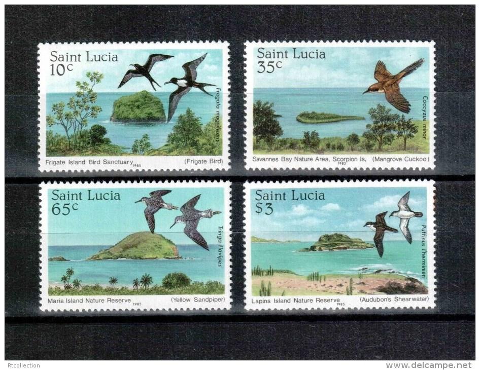 St. Lucia 1985 Birds Bird Animals Animal Nature Reserves Fauna Cuckoos Stamps MNH  Michel 771-774 Sc#770-773 - Cuckoos & Turacos