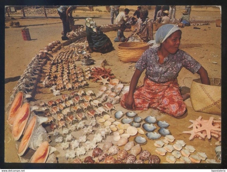Madagascar. Tulear *Marchandes De Coquillages* Ed. Opticam Nº 116. Circulada 1997. - Madagascar