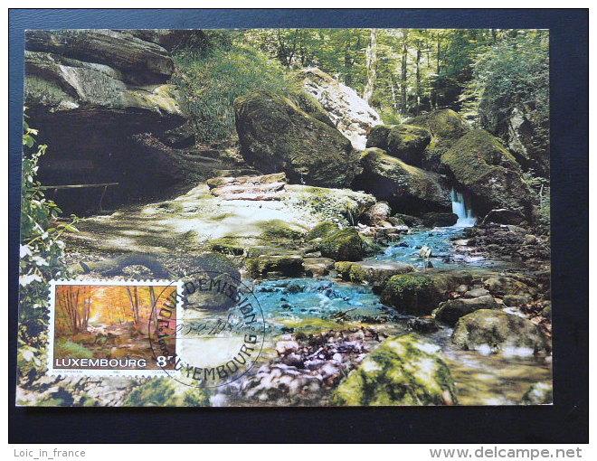 Carte Maximum Card Petite Suisse Foret Forest  Luxembourg Ref 70495 - Cartoline Maximum