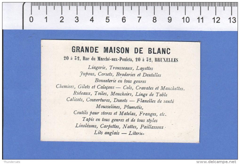 CHROMO GRANDE MAISON DE BLANC BRUXELLES LIEGE PALAIS DE JUSTICE - Autres