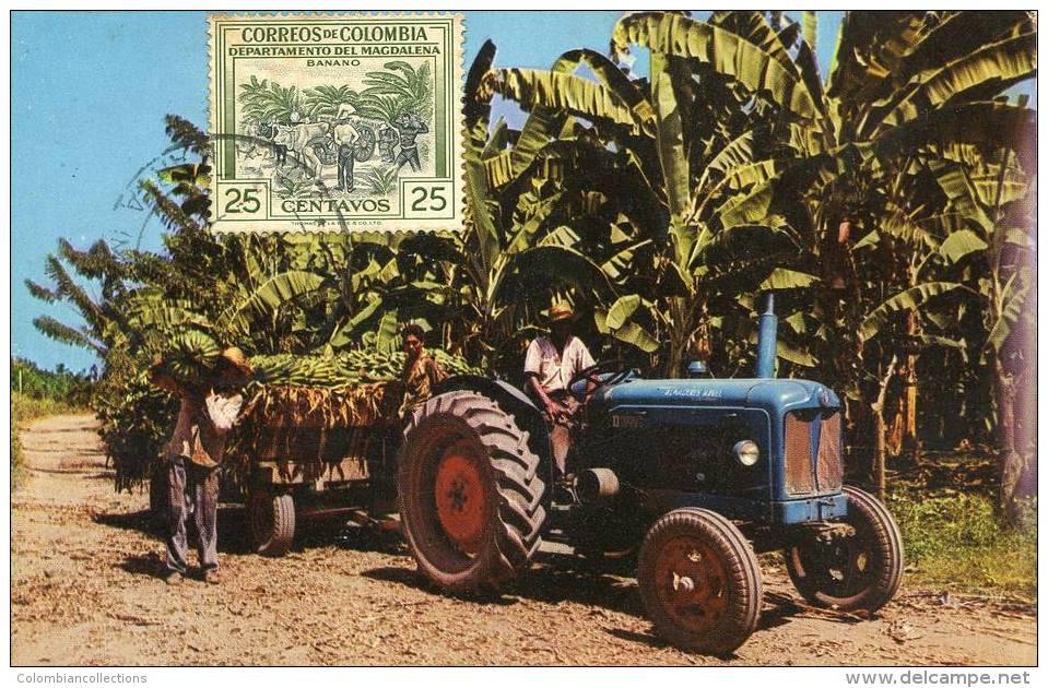 Lote PEP879, Colombia, Postal, Postcard, Tarjeta Maxima, Maximun Card, Banano, Banana Tree - Colombia