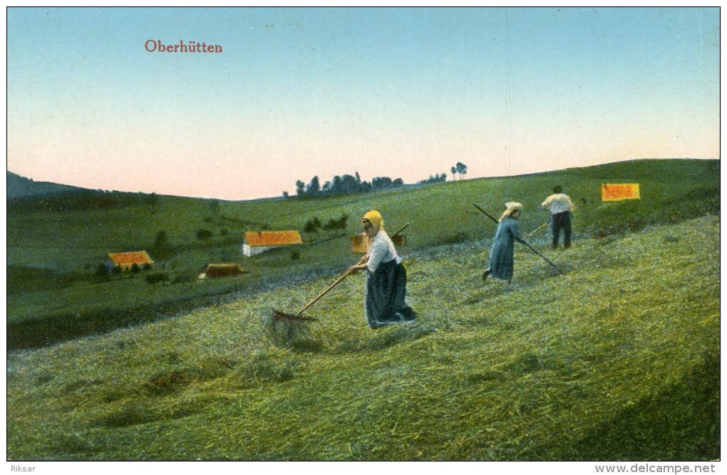 AGRICULTURE(ALSACE) FENAISON - Cultures