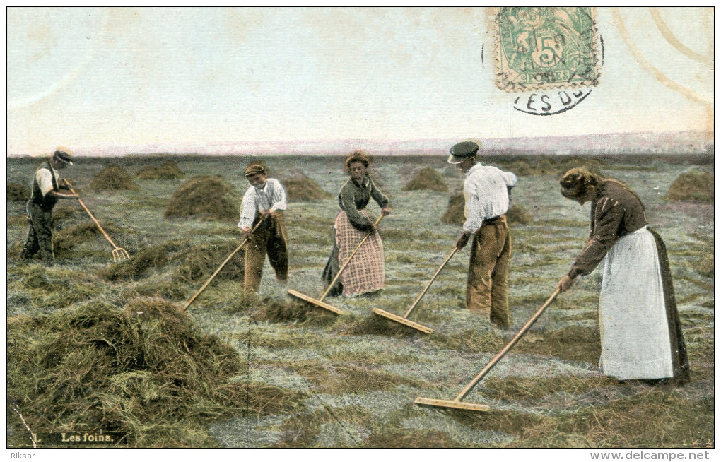 AGRICULTURE(FENAISON) - Cultures