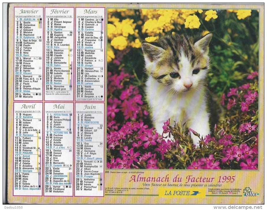 Calendrier Des Postes 1995  69 Rhone - Grand Format : 1991-00