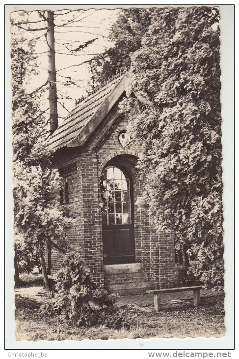Kasterlee, O.L.V Van Smart (pk23496) - Kasterlee
