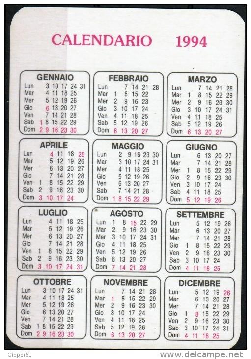 Calendario Tascabile 1994 Fronte E Retro - Calendari