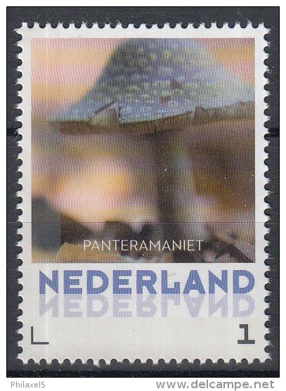 Nederland - 8 September 2015 - Paddestoelen/Pfilzen/Mushrooms - Panteramaniet - MNH - Pilze