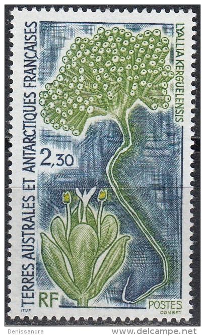 TAAF 1993 Yvert 175 Neuf ** Cote (2015) 1.25 Euro Flore Antarctique Lyallia Kerguelensis - Terres Australes Et Antarctiques Françaises (TAAF)