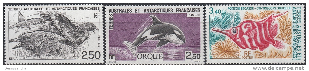 TAAF 1993 Yvert 176 - 178 Neuf ** Cote (2015) 5.15 Euro Skua / Orque / Poisson-bécasse - Neufs