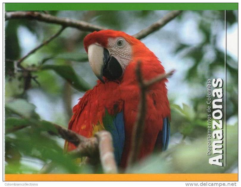 Lote PEP327, Colombia, Postal, Postcard, Amazonas, Amazon, Ave, Bird, Macaw - Colombia