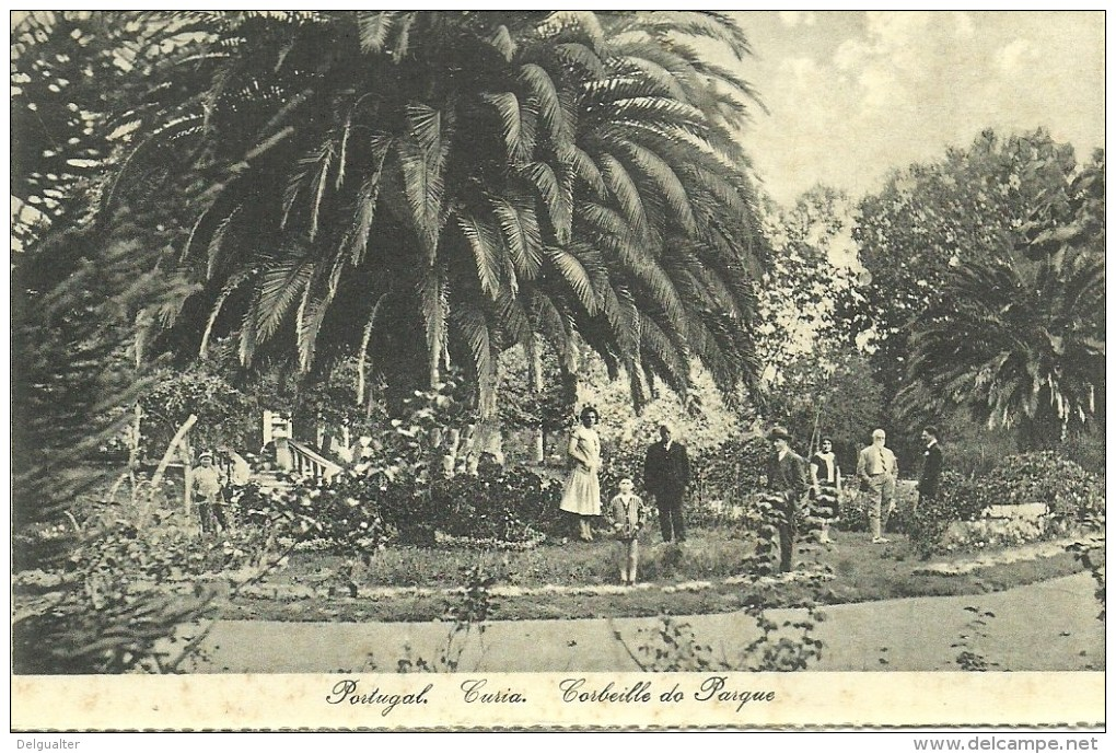 Curia - Corbeille Do Parque - Aveiro