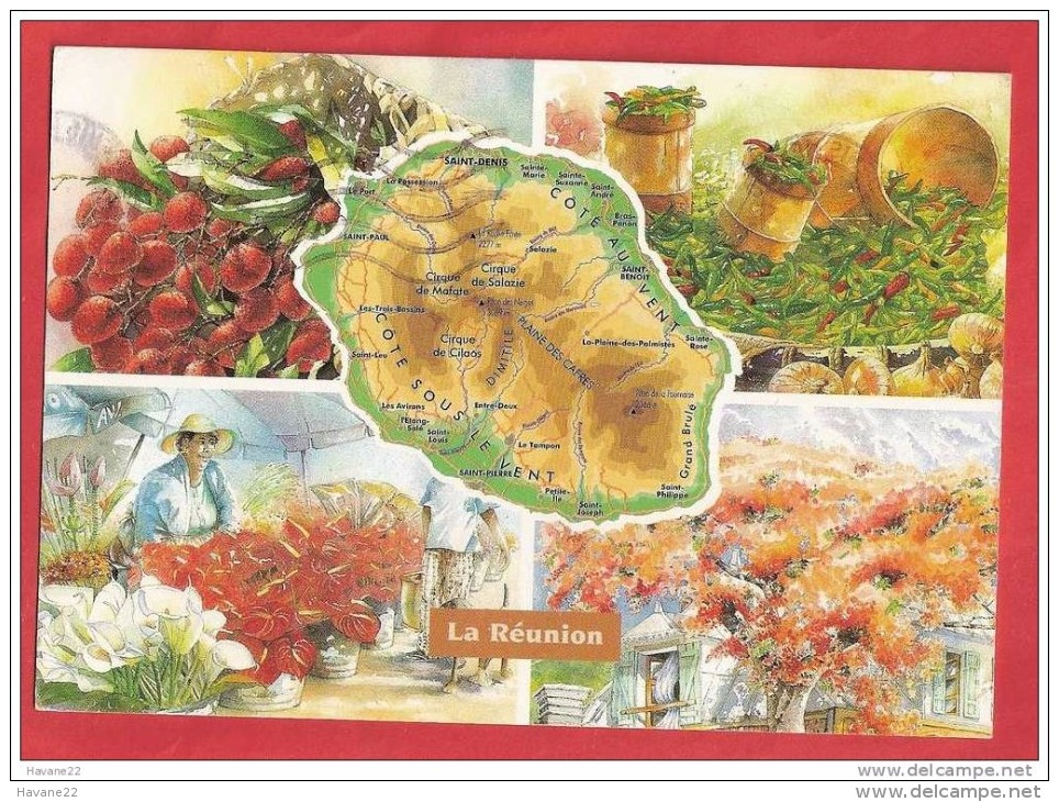 M671 LA REUNION AQUARELLES SYLVIE DAVID ORPHIE GEOGRAPHIQUE - La Réunion