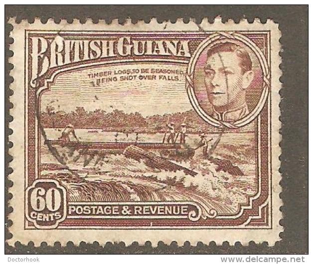BRITISH GUIANA  Scott  # 237 VF USED - British Guiana (...-1966)
