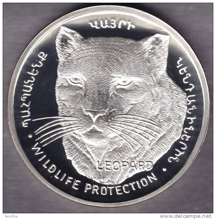 @Y@   Nagorno Karabakh  1000 Dram 2004 Silver Coin. Rare Wildlife Coin Leopard - Nagorno-Karabakh