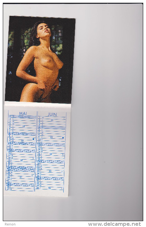Calendrier Calendarietto 1994 Nu Femme Pin Up - Calendari