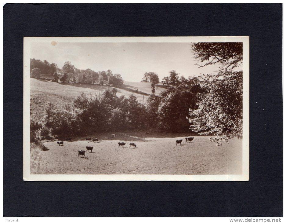 56096   Regno  Unito,  Greetings From  Prinknash  Abbey,  NV - Inghilterra