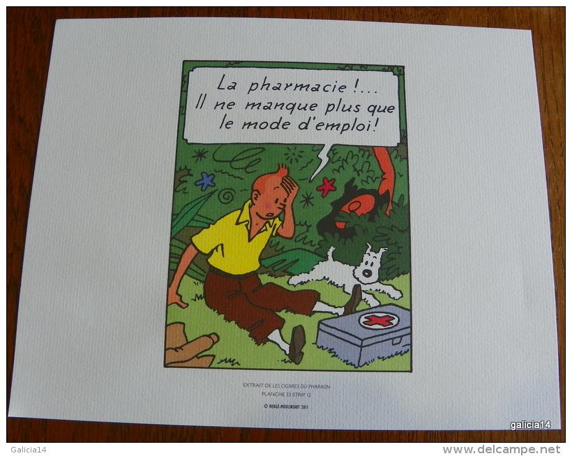 LOT DE 3 EX-LIBRIS TINTIN ~ HERGE MOULINSART 2011 / LES CIGARES DU PHARAON - Illustrateurs G - I