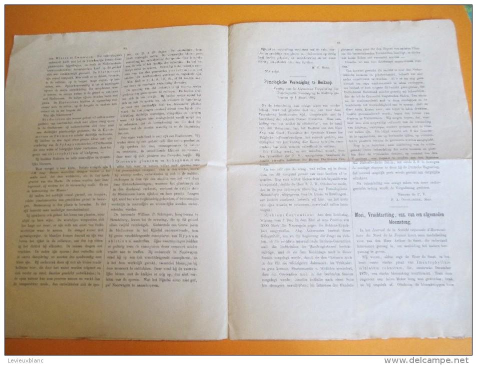 SIEBOLDIA/Weekblad Voor Dein Tuinbouw In NEDERLAND/N°11/1882   MDP46 - Books, Magazines, Comics