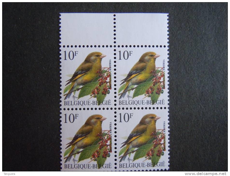 België Belgique Belgium 1992 Vogels Oiseaux Buzin Groenling Verdier Bloc De 4 COB & Yv 2461 MNH ** - 1985-.. Vögel (Buzin)