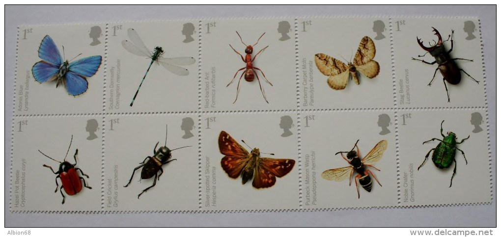 ACTION FOR SPECIES [INSECTS] 2008 - Nuevos