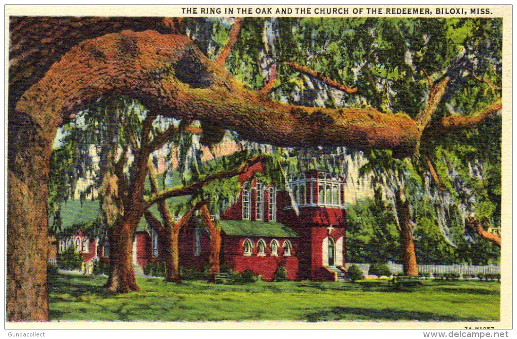 The Ring In The Oak And The Church Of The Redeemer, Biloxi - United States