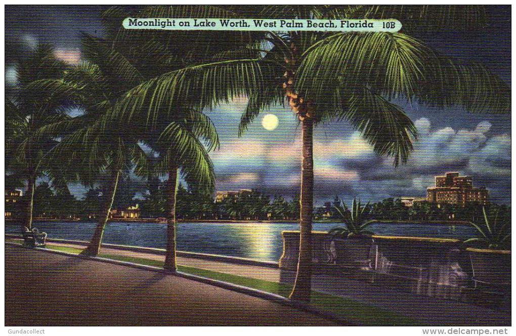Moonlight On Lake Worth, West Palm Beach, Florida - Palm Beach