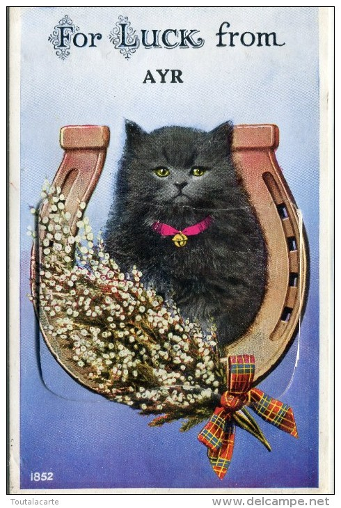 POST CARD FOR LUCK FROM AYR  MULTI VUES - Ayrshire