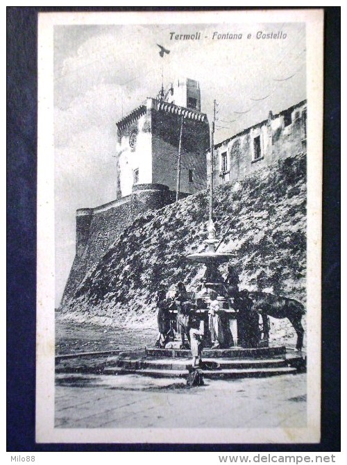 MOLISE -CAMPOBASSO -TERMOLI -F.P. LOTTO N°479 - Campobasso
