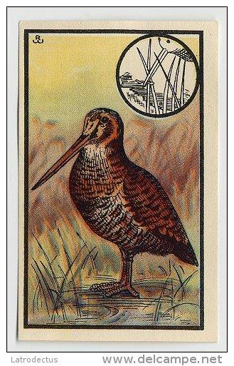 Kwatta - Zoologie (ca 1940) - 112 - Waldschnepfe, Houtsnip, Eurasian Woodcock, Becasse Des Bois - Chromos