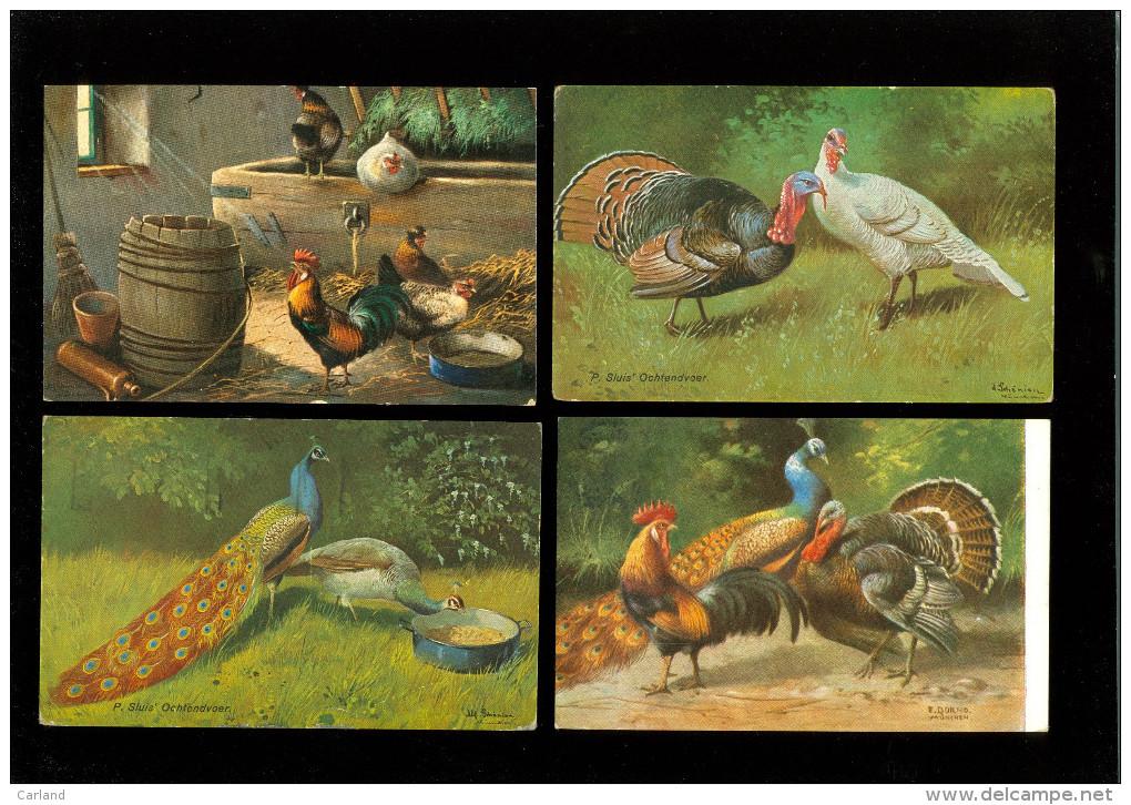 Beau Lot De 20 Cartes Postales De Fantaisie Volaille Poule Coq Dinde  Mooi Lot Van 20 Postkaarten Fantasie Gevogelte Hen - Postcards