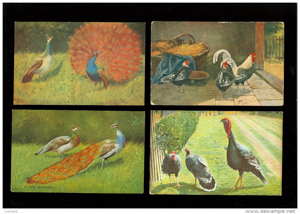 Beau Lot De 20 Cartes Postales De Fantaisie Volaille Poule Coq Dinde  Mooi Lot Van 20 Postkaarten Fantasie Gevogelte Hen - Postales