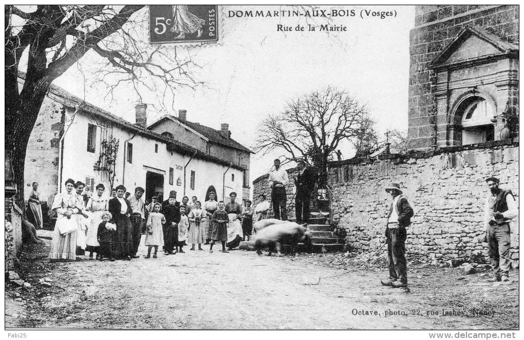 Cartes Postales > Europe > France > [88] Vosges > Granges  ~ Dommartin Aux Bois
