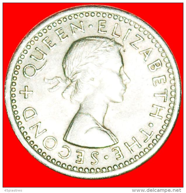 + DRESSED QUEEN (1955-1965): NEW ZEALAND★ 3 PENCE 1956! LOW START ★ NO RESERVE! - Nouvelle-Zélande