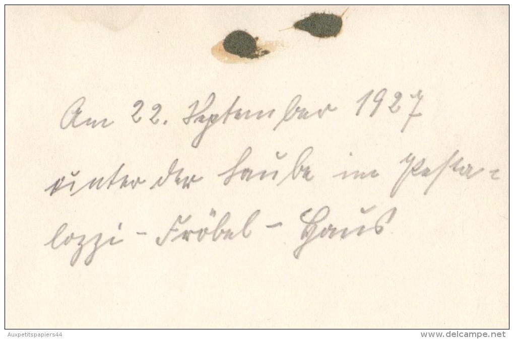 Photo Originale - Jeunes Filles Allemandes Le 22 Septembre 1927 - Voir Légende Au Dos - Deutsch Mädchen 1927 - Pin-Ups