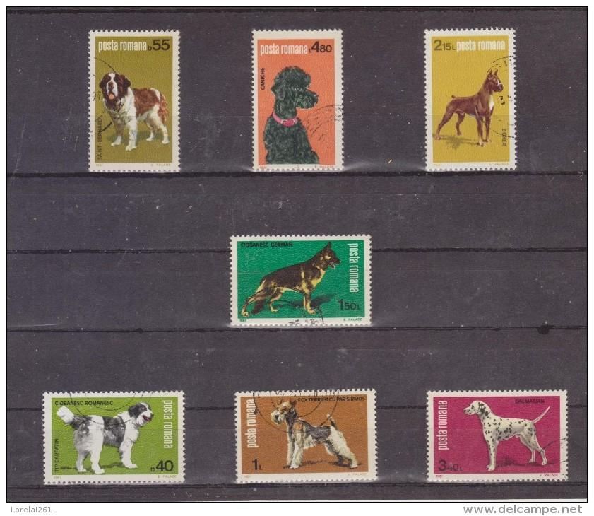 1981 - Exposition Canine Mi No 3762/3768 Et Yv No 3313/3319 - 1948-.... Repúblicas