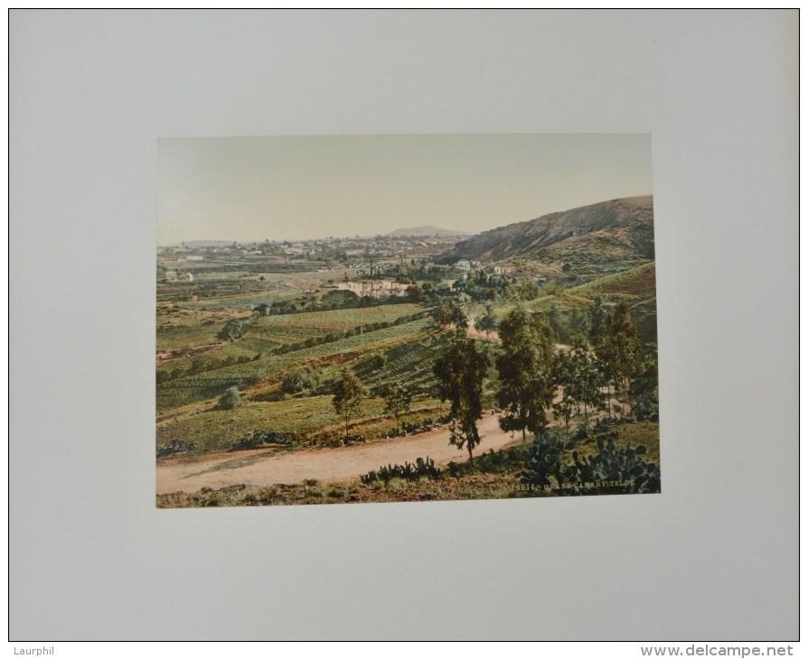 Telde Gran Canaria Photochrome 1900 - Antiche (ante 1900)