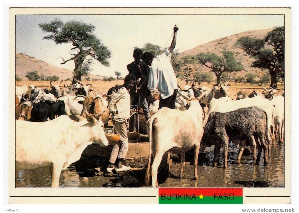 BURKINA FASO - PROVINCE DE SOUM - UN ABREUVOIR à ARBINDA - Vedi Retro - Burkina Faso