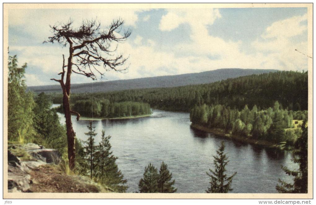 93997 - Suède      Alvdalen    Storbrott - Suède