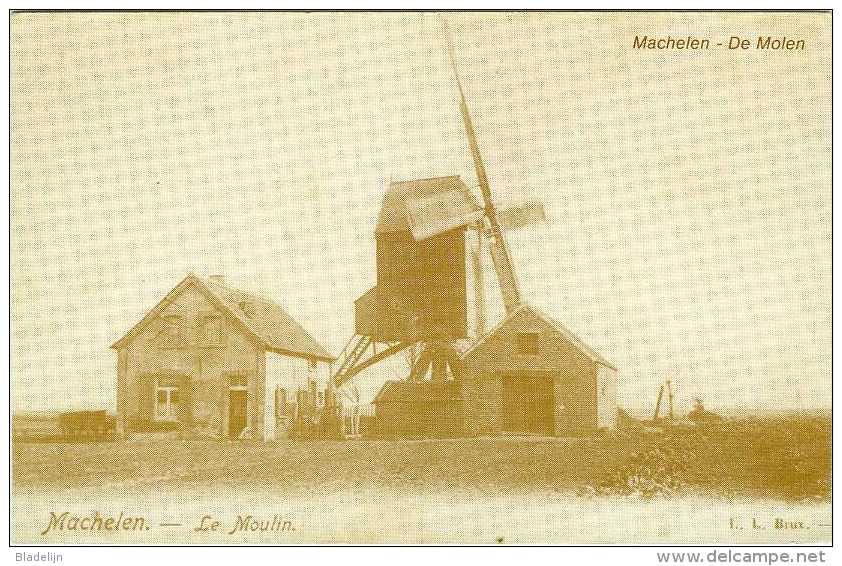 MACHELEN (Brabant) - Molen/moulin - Reproductie In Kader Van Verkiezingen/politiek (SP) - Molen Van Bal - Machelen