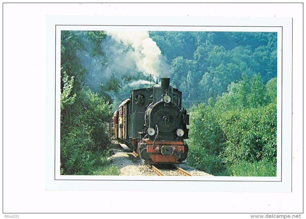 Thème Chemins De Fer - Train Locomotive - Carte Non Située - Houtland Brugge - Eisenbahnen