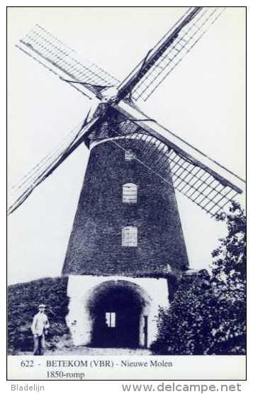 BETEKOM - Begijnendijk (Vlaams-Brabant) - Molen/moulin - Blauwe Prentkaart Ons Molenheem Van De Nieuwe Molen, Thans Romp - Begijnendijk