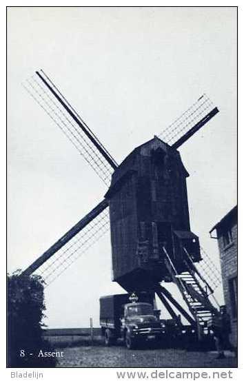 ASSENT Bij Bekkevoort (Vlaams-Brabant) - Molen/moulin - Blauwe Prentkaart Ons Molenheem Van De Gewezen Mierenbergmolen - Bekkevoort