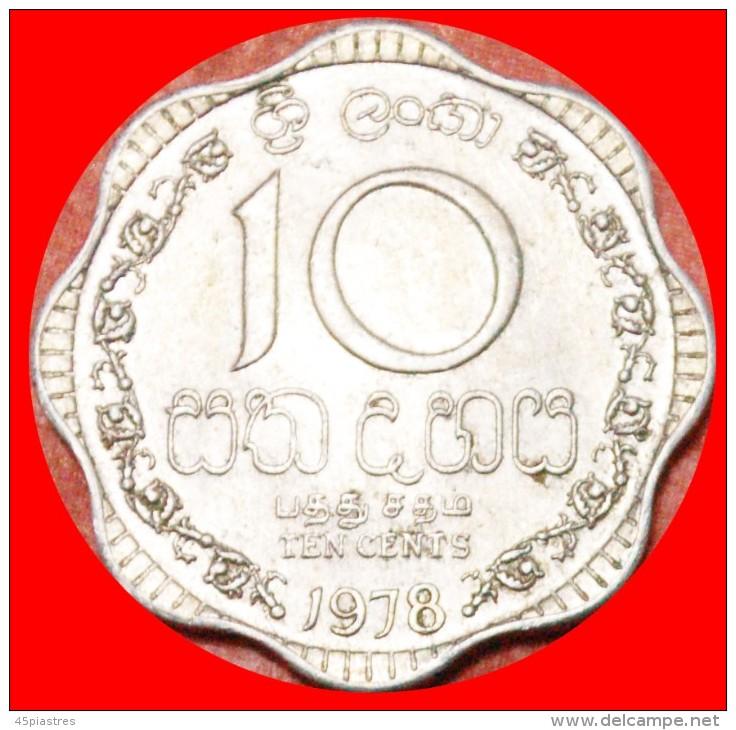 ★LION: SRI LANKA  ★ 10 CENTS 1978! LOW START ★ NO RESERVE! - Sri Lanka