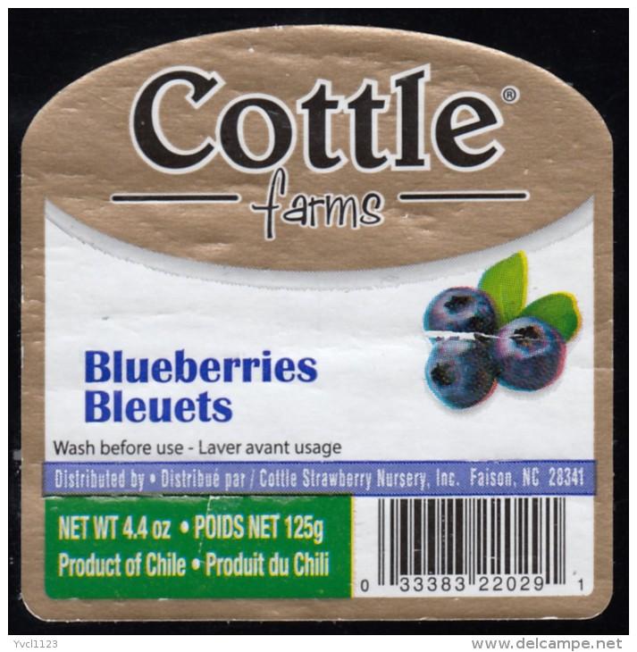 Fruits & Vegetables - Bluererries, Produce Of Chili (*) (FL3338) - Fruits & Vegetables