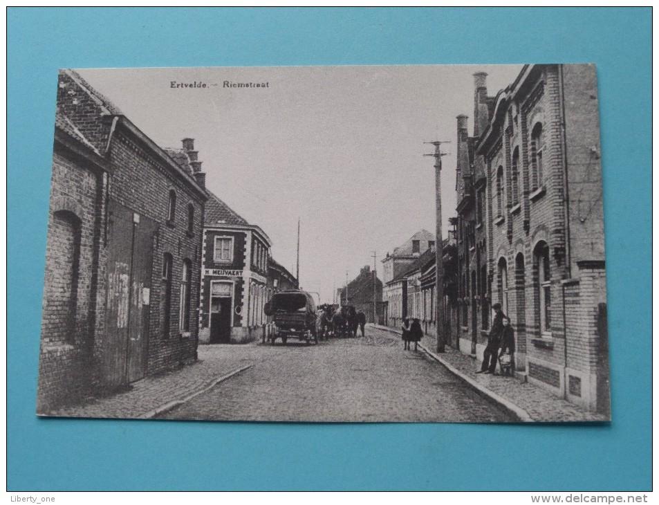Riemstraat ERTVELDE ( REPRO Copie / Copy ) - Anno 19?? ( Zie Foto Voor Details ) !! - Evergem